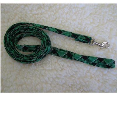 Dog Leash Reflective Web Green 1/2-inch x 6-foot
