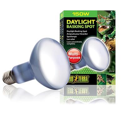 150 Watt Daylight Basking Terrarium Bulb from Exo Terra Click for larger image