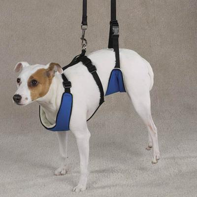Lift & Lead Dog Harness Medium