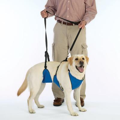 Lift & Lead Dog Harness Large