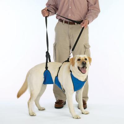Lift and Lead Dog Harness XXlarge Click for larger image