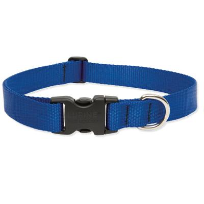 Lupine Nylon Dog Collar Adjustable Blue 9-14 inch Click for larger image