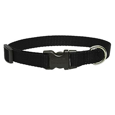 Lupine Nylon Dog Collar Adjustable Black 9-14 inch