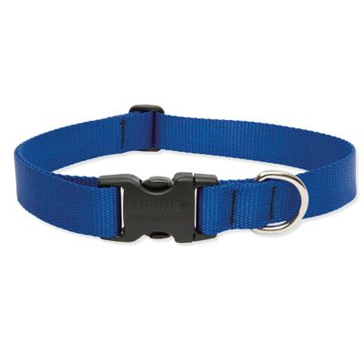Lupine Nylon Dog Collar Adjustable Blue 13-22 inch Click for larger image