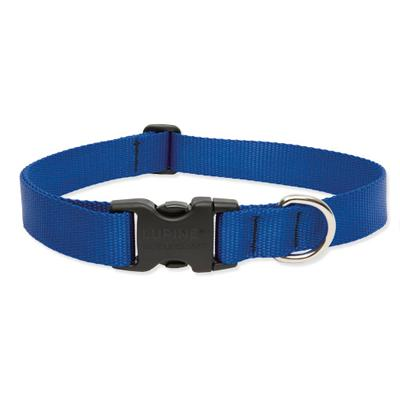 Lupine Nylon Dog Collar Adjustable Blue 15-25 inch Click for larger image