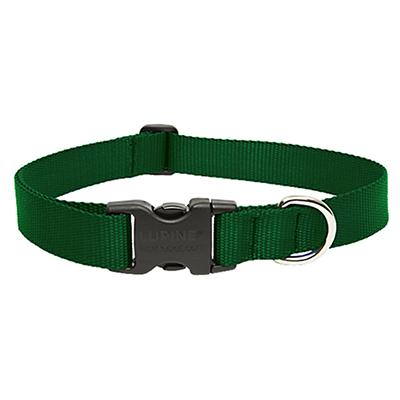 Lupine Nylon Dog Collar Adjustable Green 15-25 inch