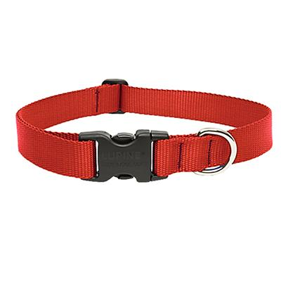 Lupine Nylon Dog Collar Adjustable Red 12-20 inch Click for larger image