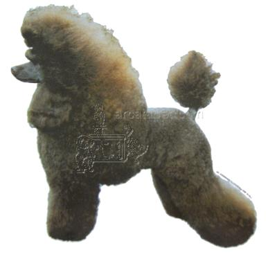 Double Sided Dog Decal Poodle Standard