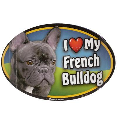 Dog Breed Image Magnet Oval French Bulldog