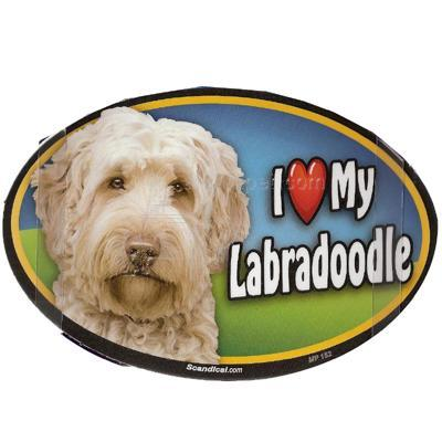 Dog Breed Image Magnet Oval Labradoodle Click for larger image