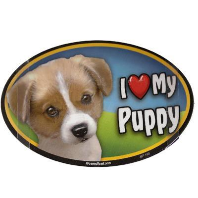 Dog Breed Image Magnet Oval Puppy