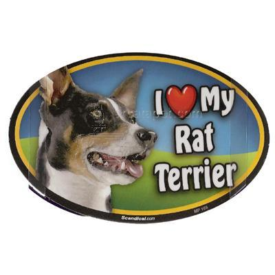 Dog Breed Image Magnet Oval Rat Terrier