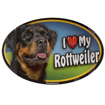 Dog Breed Image Magnet Oval Rottweiler