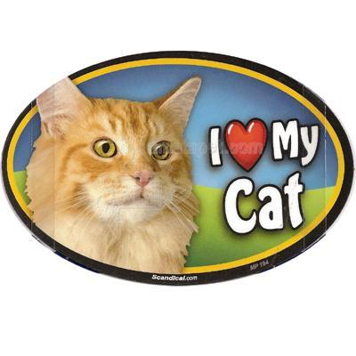 Cat Image Magnet Oval Orange Cat