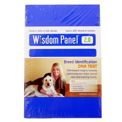 Wisdom Panel Insights Dog DNA Test Kit