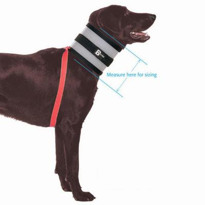 The Original BiteNot Dog Collar Size 8 Cone Alternative