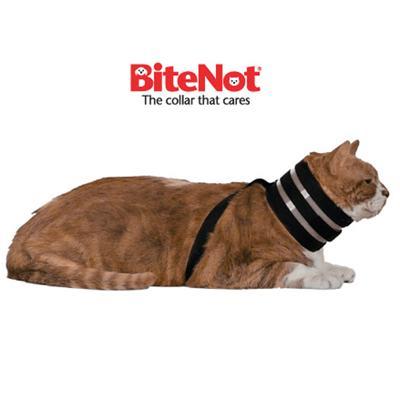 The Original BiteNot Cat Collar Small Cone Alternative