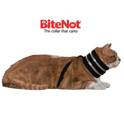 The Original BiteNot Cat Collar Large Cone Alternative Click for larger image