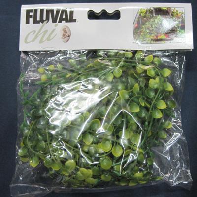 Fluval Chi Vine Aquarium Plant