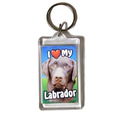 Plastic Keyring Chocolate Labrador