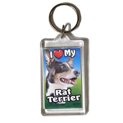 Plastic Keyring Rat Terrier