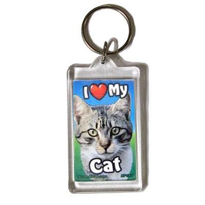 Plastic Keyring Cat Tabby Dark