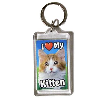 Plastic Keyring Kitten Mix Orange