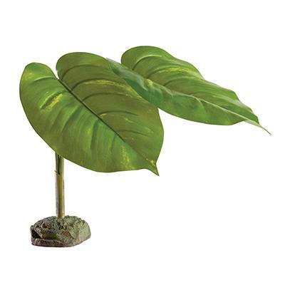 Exo Terra Scindapsus Tree Frog Terrarium Plant