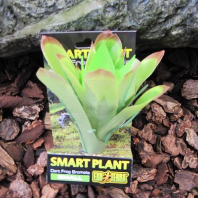 Exo Terra Bromelia Small Tree Frog Terrarium Plant