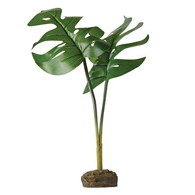 Exo Terra Philodendron Tree Frog Terrarium Plant Click for larger image