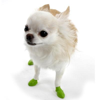 Pawz Natural Rubber Dog Boot Tiny 12pk