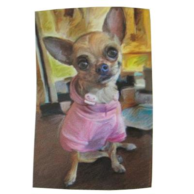 Robert McClintock Licensed Garden Flag Chihuahua