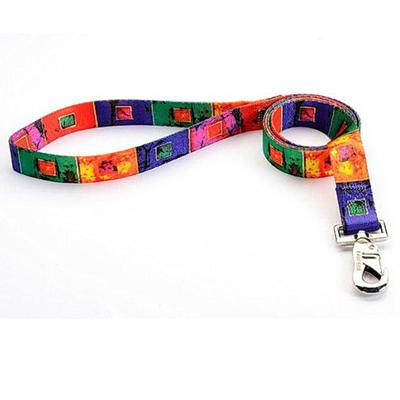 Tuff-Lock Large Glass Nylon Leash 1in x 6-ft.