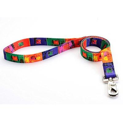 Tuff-Lock Large Glass Nylon Leash 3/4in x 6-ft.