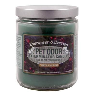 Pet Odor Eliminator Candle Evergreen-Seasonal
