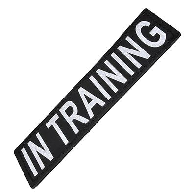 Removable Velcro Patch In Training Small / Medium