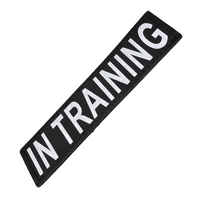 Removable Velcro Patch In Training Large / XLarge Click for larger image