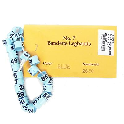 Poultry Numbered Leg Bands Blue Size 7 Numbered 26-50 Click for larger image