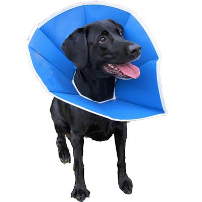 Trimline Soft Elizabethan Collar 12 inch Click for larger image