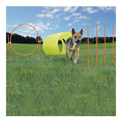 Outward Hound Outdoor Agility Starter Kit