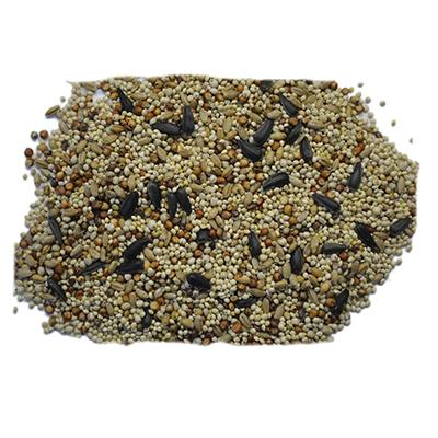Volkman Western Delight Wild Bird Food Seed Mix 20 lb