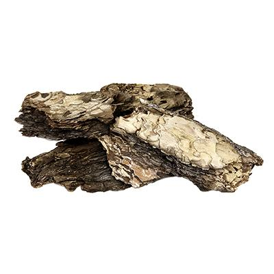 Galapagos Basking Bark Natural Terrarium Decoration