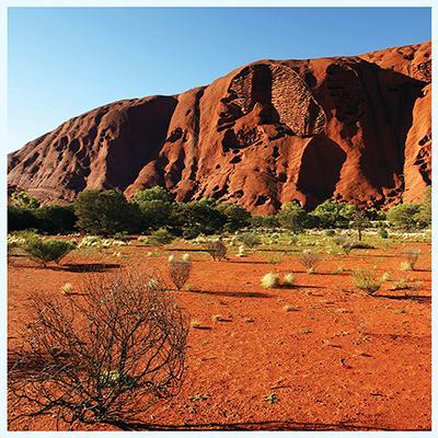 Red Desert Aquarium Terrarium Vinyl Background 36x18