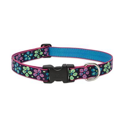 Dog Collar Adjustable Nylon Flower Power 12-20 1 inch wide Click for larger image