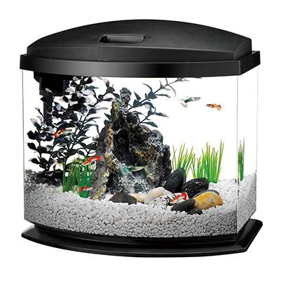 Aqueon Mini Bow LED BLACK 5 gallon Tank