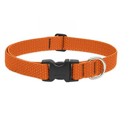 Lupine Nylon Dog Collar Adjustable Eco Pumpkin 16-28
