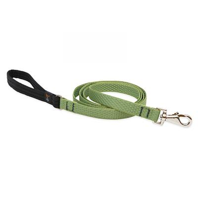 Lupine Dog Leash 6-foot x 3/4 inch Eco Moss Click for larger image