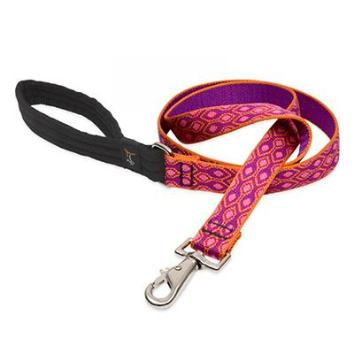 Lupine Nylon Dog Leash 4-foot x 1-inch Alpen Glow Click for larger image
