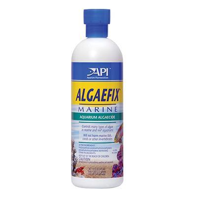 API AlgaeFix Marine for Saltwater and Reef Aquariums 16oz  Click for larger image