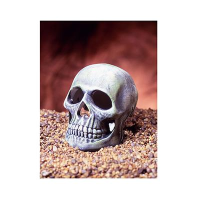 Skull Aquarium Ornament